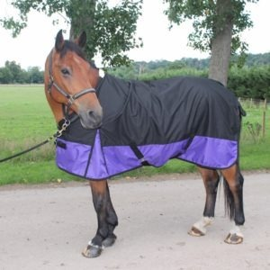 Cwell Equine New Lightweight Black Purple Turnout Rug Rain Sheet No Fill